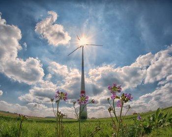 betriebliches umweltmanagement