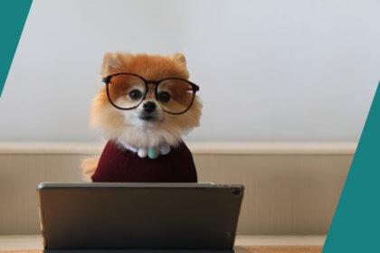 Online_Studium