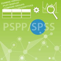 Datenanalyse PSPP