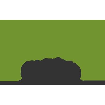 Dien Hong